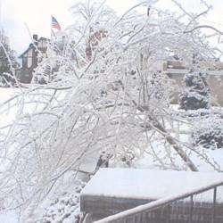 2003 Ice Storm