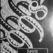 1998 PEHS Yearbook.pdf