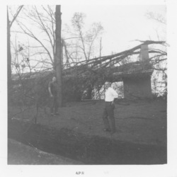 Unknown individual standing in front of destroyed trees