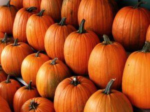 pumpkins-1081938-m